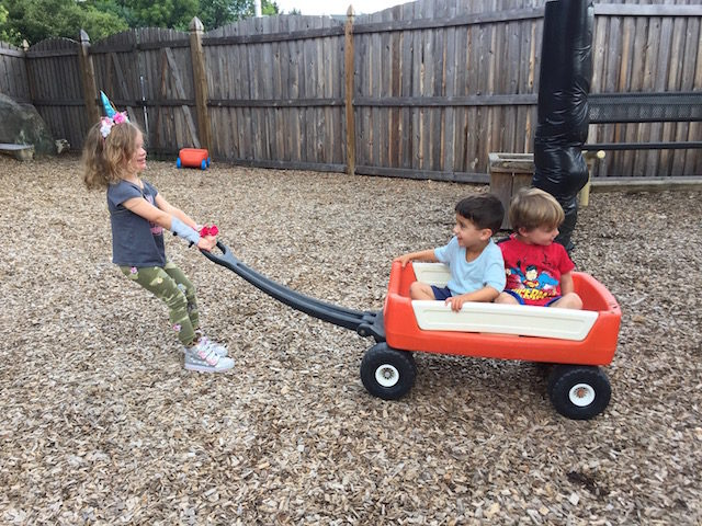 Playground wagon