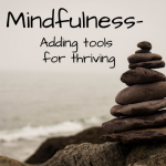 Mindfulness - Adding Tools for Thriving<br/>Wed., May 12 (8-9 PM)